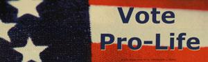 PRO-LIFE BUMPER STICKER Vote Pro-Life.
