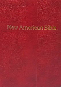 ST. JOSEPH NEW AMERICAN BIBLE (PERSONAL SIZE GIFT EDITION) No. 510/13BG LEATHER